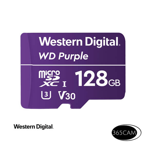 Western Digital 128Gb