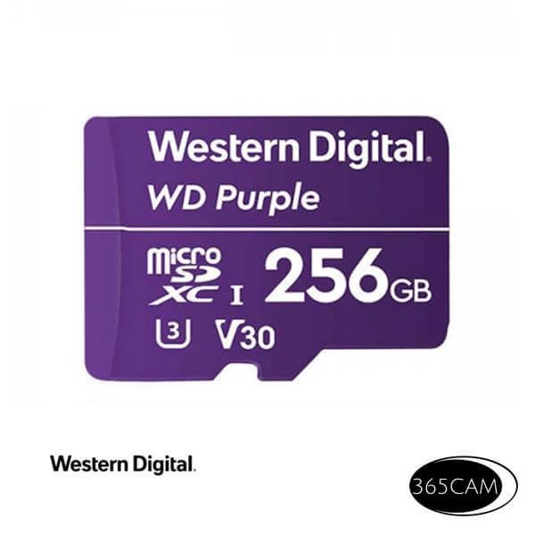 Western Digital 256 GB